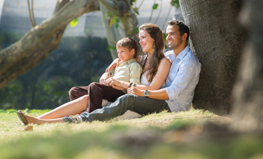 mom, dad and child sitting under tree